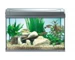 AquaArt 60л - БЕЛЫЙ! - аквариум + светильник + фильтр + нагреватель + корм + средства для воды