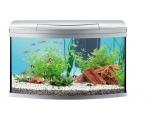 AquaArt 100л - аквариум + светильник 2x24W T5 + фильтр EC 600+нагреватель HT 100 + корм + средство для воды