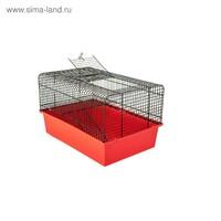 """Клетка Дарэлл """"Джерри-2"""" с этажом, для грызунов, 37*26*23 см, микс"""