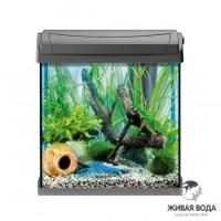 AquaArt 20л - обновленный аквариум! - аквариум + светильник T5 + фильтр + корм + средство для воды