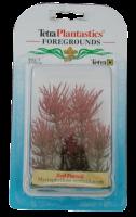 Растение аквариумное Red Foxtail