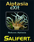 Препарат для борьбы с вредными Аиптазиями Salifert