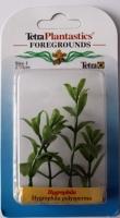 Растение аквариумное Hygrophila