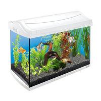 AquaArt 60л - обновленный аквариум! - аквариум + светильник + фильтр + нагреватель + корм + средства для воды