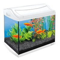 AquaArt 30л - БЕЛЫЙ! - аквариум + светильник T5 + фильтр + корм + средство для воды
