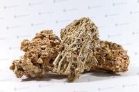 Камень Сухой морской, за кг