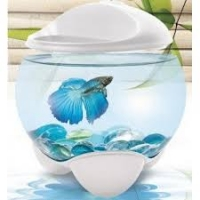 Аквариум  Betta Bubble белый 1,8l