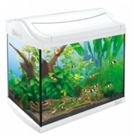 AquaArt 20л - БЕЛЫЙ! -аквариумный комплекс 20 литров + светильник T5 + фильтр + корм + средство для воды