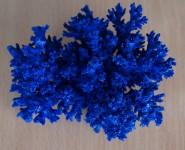 Крашенный коралл синий