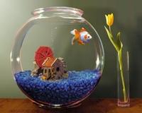 Круглый аквариум комплект с золотой рыбкой или петушком